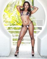 Black pornstar Skyler Nicole displaying juicy azz in thong bikini