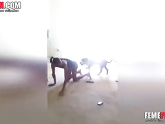 Horny dog goes balls deep and сreampies female owner